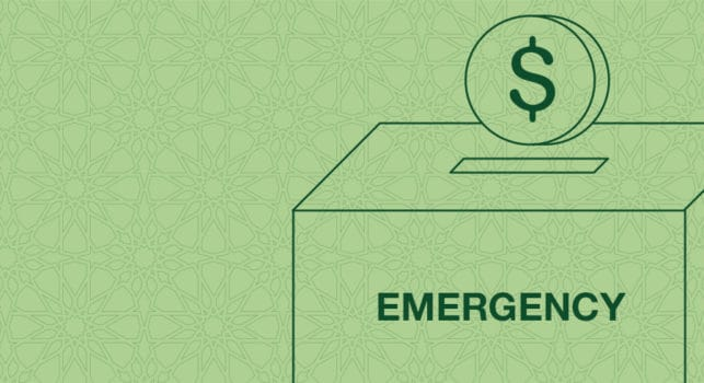 Ae emergency fund in line banner