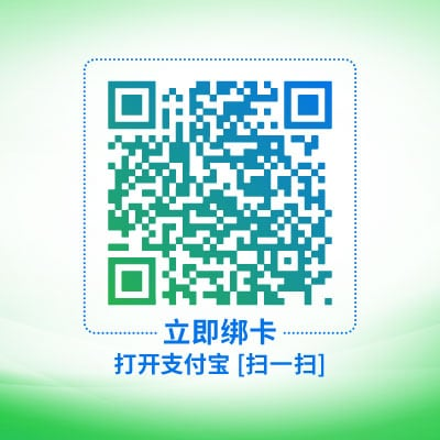 QR Code, Rug