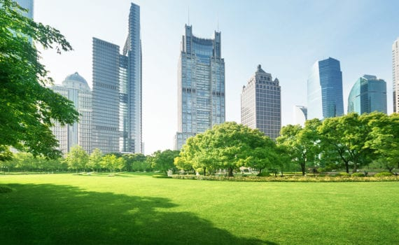 Skyscrapers amidst greenery depicting businesses going green