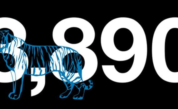 infographic: Illegal wildlife trade