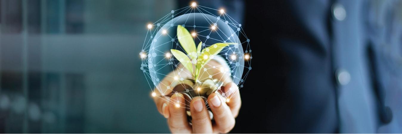 Greening the economy