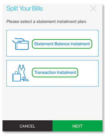 "Select ""Statement Balance Instalment"" or ""Transaction Instalment"""