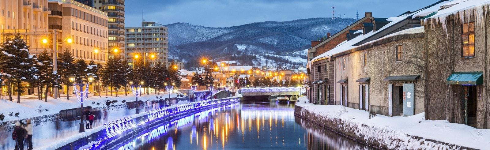 hokkaido's winter river view, travel insurance banner