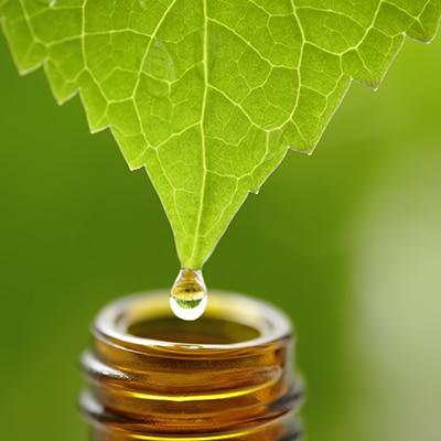 In max bupa health companion alternative treatment health insurance