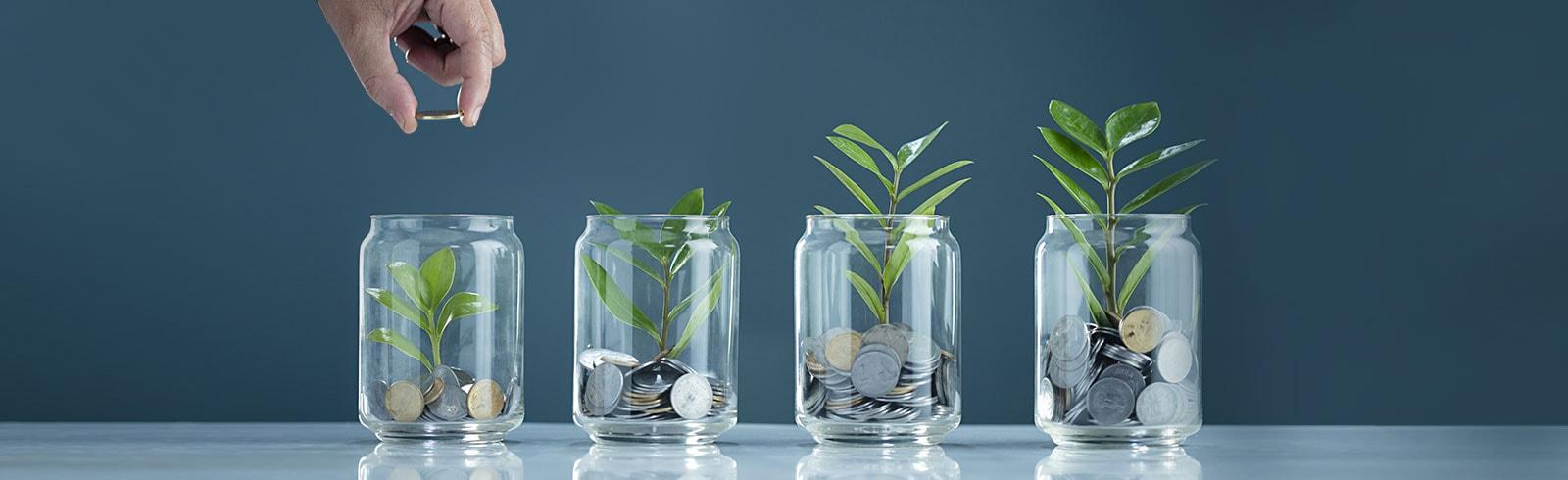 Save your savings
