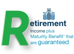 Retirement income plus