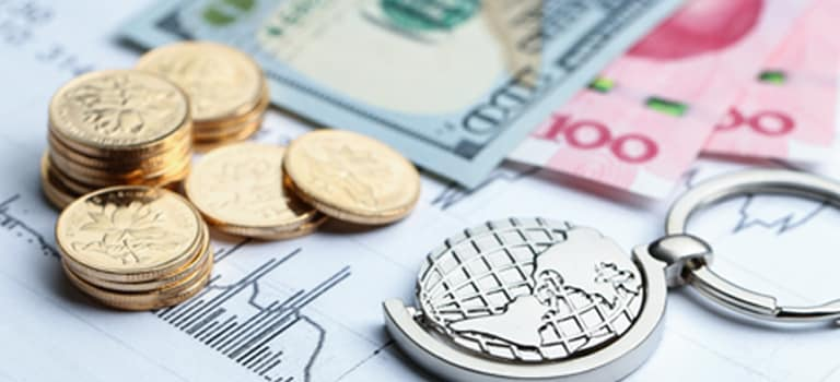 Foreign Currency Savings Account