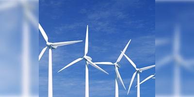 The E in ESG: Environmental Stewards
