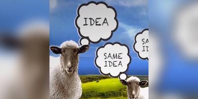 Behavioural Finance: Herding