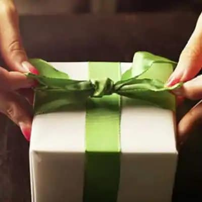 Person, Human, Gift