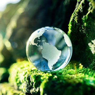 Sphere, Moss, Plant