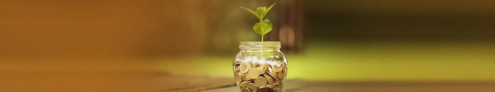 Jar, Money, Coin
